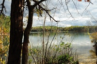 Photo of Walden Pond by Daynuh, flickr.com.