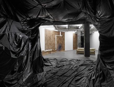 Rodney McMillian. Installation view of <i>Prospect Ave.</i>, 2012.