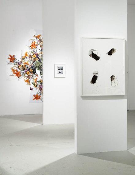 Adam Marnie Thesis Show Installation, Summer 2011. Photo: Pete Mauney.