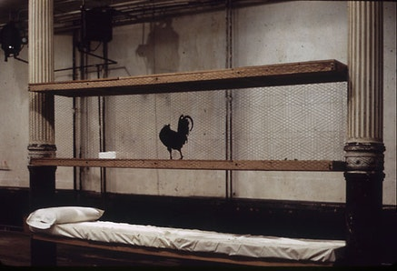 """Bill Beckley, """"Rooster Bed Lying,"""" 1971. Live rooster, pillow, sheet, wire caging."""
