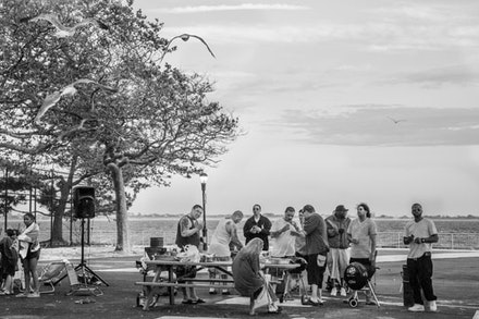 They may drown out the sound of the waves with hip-hop, and overpower the smell of the saltwater with charred meats, but barbecue-goers cannot avoid the pestering seagulls.