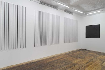 Thomas Kovachevich, 2013, installation shot, Courtesy of Callicoon Fine Arts.