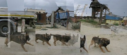 "Iosif Kiraly, ""Reconstruction-Ovidiu Construction Site with Barking Dog,"" 2010 – 12. Image courtesy the artist."