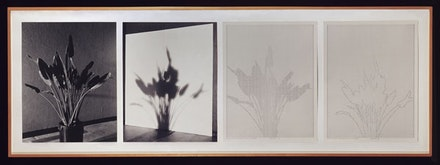 "Charles Gaines, ""Shadows II, Set 1,"" 1980. From the <em>Shadows</em> series, 1978 – 80. Photographs, ink on paper, Four parts: 20 × 16 ̋ each; 24 1/2 × 72 ̋ (overall framed). Private collection. Courtesy Kent Fine Art, New York."