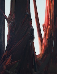 "Claire Sherman, ""Tree,"" 2014. Oil on canvas, 108 x 84"". Courtesy of the artist and DC Moore Gallery, New York."
