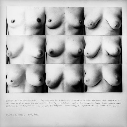 Breast Forms Permutated.
