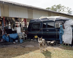 """Justine Kurland, """"Van Wolf,"""" 2011, Inkjet print, edition of 6, 16 × 20 ̋. Courtesy of the artist and Mitchell-Innes & Nash, NY."""