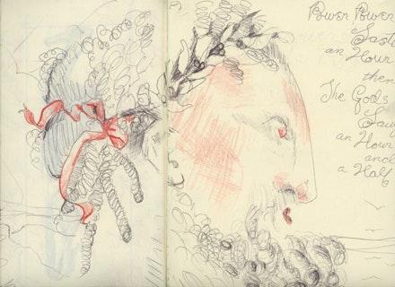 RR's Hydra notebook, 2012.