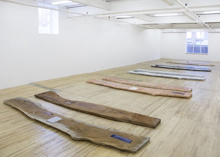 "Lucy Skaer, installation view of ""Sticks & Stones I,"" 2013 – 2015."