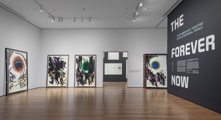 Installation view of <em>The Forever Now: Contemporary Painting in an Atemporal World</em> at The Museum of Modern Art, New York (December 14, 2014 &#150; April 5, 2015). Photo by John Wronn &copy; 2014 The Museum of Modern Art.