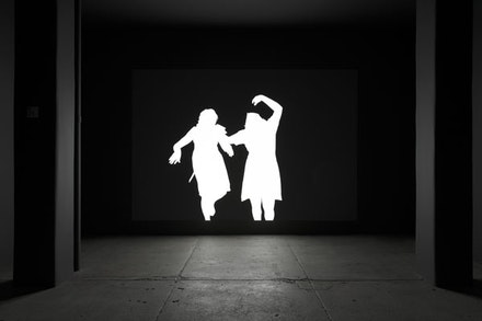 Alfredo Jaar, <em>Shadows</em> (2014). Installation with LED lights, aluminum, video projection, 116 x 174