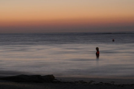 <em>36.5 / a durational performance with the sea</em>, Akumal. Photo: Scott Brown.