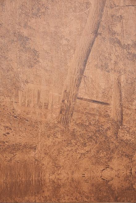 Clifford Ross, <em>Sopris Wall I</em>, 2015 (detail). UV cured inkjet print on wood. Courtesy the artist. &copy; Clifford Ross Studio. Photo by Tom Powell.