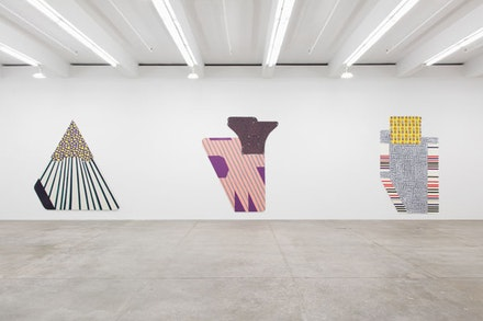 Installation view: <em>Ruth Root</em>, Andrew Kreps, New York, June 25 &#150; August 14, 2015.