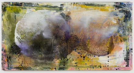 Jackie Saccoccio, <em>Profile (Pineapple, Cop 223)</em>, 2015. Oil and mica on linen, 79 × 152 inches. Courtesy 11R Eleven Rivington, New York, and Van Doren Waxter, New York.