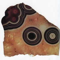 "Eye agate fragment (Uruguay), from the collection of Roger Caillois (1913 – 1978). Caillois's self-described ""materialist mysticism"" found perhaps its most vivid expression in his relationship to stones, and he amassed a large collection of cut and polished mineral specimens throughout his life. Their hidden structures and forms presented, Caillois believed, one of many important subjects for what he called ""diagonal science,"" a set of practices designed to ""bridge the older disciplines and force them to engage in dialogue."" Such an approach would ""[slice] obliquely through our common world [to] decipher latent complicities and reveal neglected correlations,"" seeking to ""further a form of knowledge that would first involve the workings of a bold imagination and be followed, then, by strict controls, all the more necessary insofar as such audacity tries to establish ever riskier transversal paths."""