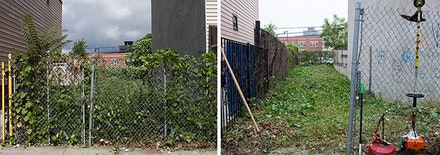 Ellie Irons, Feral Landscape Typologies of Bushwick: 1277 Dekalb Avenue (Urban Meadow, Before and After), 2015. Digital photograph. Photo: Ellie Irons.