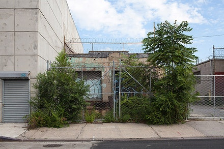 Ellie Irons, Feral Landscape Typologies of Bushwick: 305 Johnson Avenue (Forest Enclosure), 2015. Digital photograph. Photo: Ellie Irons.