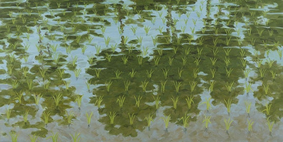 Robert Berlind, <em>Rice Paddy with Reflected Trees #2</em> (2012). Oil on linen. 72 × 144 inches.