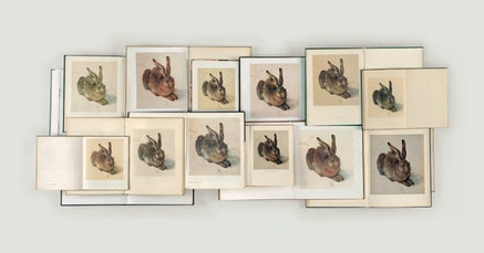 Claudia Angelmaier, <em>Hase</em>, 2004. Chromogenic print, 43 x 78 3/4 inches. &copy; Claudia Angelmaier. Courtesy the artist.