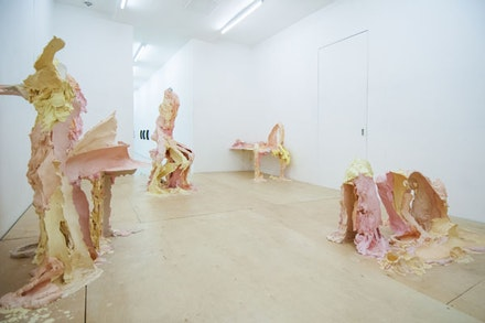 Installation View: Juliana Cerqueira Leite: <em>INTRANSITIVE</em>. Regina Rex, February 28 – April 10, 2016. Courtesy Regina Rex.
