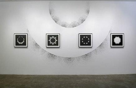 Installation view: <em>Judith Braun: Homeostasis</em>. McKenzie Fine Art, March 20 &#150; April 24, 2016. Courtesy McKenzie Fine Art.
