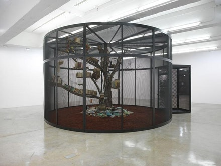 Installation view: <i>Mark Dion: The Library for the Birds of New York and Other Marvels</i>,Tanya Bonakdar Gallery, New York.