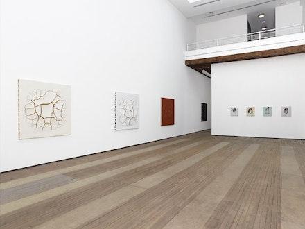 Installation view: <em>Adriana Varej&atilde;o: Kindred Spirits</em>. Lehmann Maupin, April 21 &#150; June 19, 2016. Courtesy the artist and Lehmann Maupin, New York and Hong Kong. Photo: Elisabeth Bernstein.