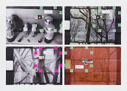 Moyra Davey, <i>Dust, Amp, Trees </i> (2016), 4 C-prints, tape, postage, ink, 12 x 18 inches each, 24 1/2 x 36 1/2 inches overall. Courtesy the artist and Murray Guy, New York.