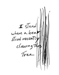 Simone Forti, <em>I Stand Where A Bear Stood...</em>, 2009. Marker and pencil on paper. 8 × 10 inches. Courtesy the artist and The Box, LA.