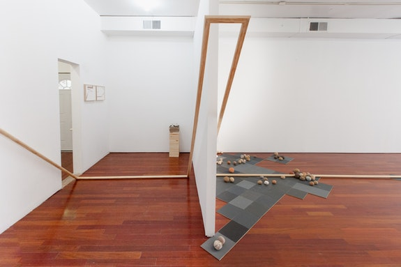 Installation View: Gabriela Salazar: <em>Eye of Palm</em>. Efrain Lopez Gallery, Chicago. July 29 - September 4, 2016.