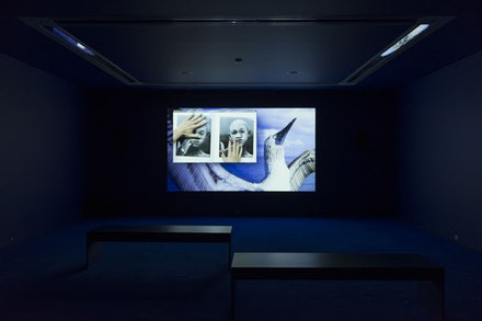 Installation view: <em>MCA Screen: Camille Henrot</em>, Museum of Contemporary Art Chicago, September 3 – December 18, 2016. Photo: Nathan Keay. © MCA Chicago.