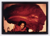 Carolee Schneemann, <em>Fresh Blood</em>. 1981 - 86. Courtesy Galerie Lelong