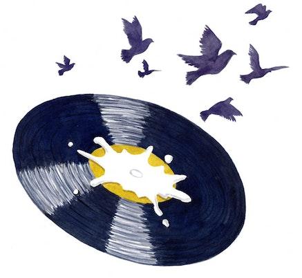 Pigeon shit vinyl. Illustration by Megan Piontkowski.
