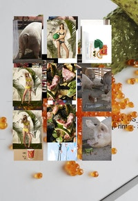 Roe Ethridge, <em>Model Prints and Pickles and Roe</em>, 2014. Dye sublimation print on aluminum. 49 1/2 x 33 inches. Courtesy the artist and Andrew Kreps Gallery, New York.
