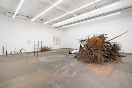 Installation view: Joanna Malinowska, <em>Not a Metaphorical Forest</em>, CANADA Gallery, New York, February 4 – March 12, 2017. Courtesy CANADA Gallery.