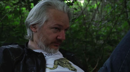 Julian Assange in <em>Risk</em>.