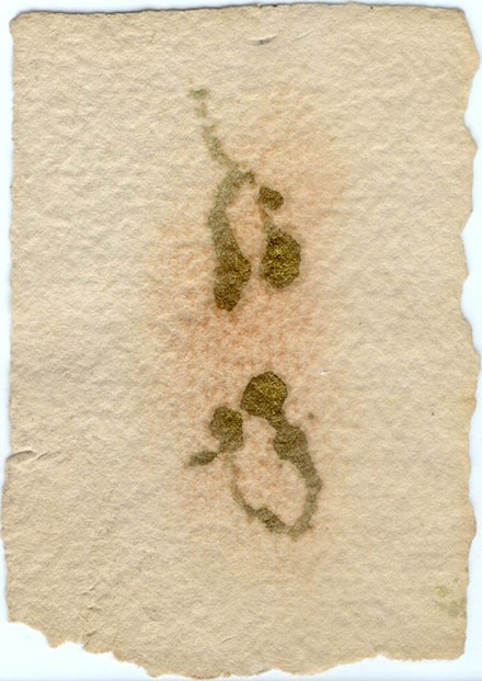 Terrell James, <em>Untitled</em>, 2005, ink on handmade paper, 4 × 2 in.
