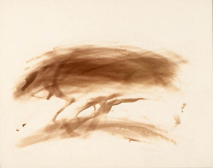 Walter Hopps, <em>Untitled (series)</em>, c. early to mid 1950's, light drawings on silver bromide photographic paper, each 10 × 8 in (approx.), Courtesy of Private Collection.