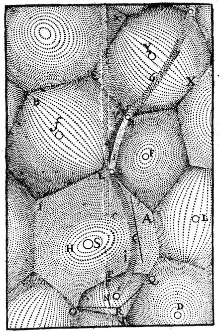Renes Descartes, Principia philosophiae, Illustration of plenum vortices, 1644