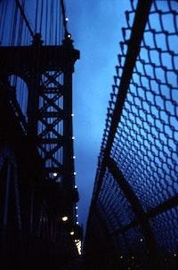 Photograph ©Brian Molyneaux (2004).
