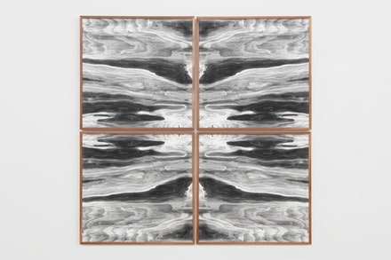 Lisa Oppenheim, <em>Landscape Portraits (Apple) (Version V)</em> 2016. set of four silver gelatin photograms in apple frames. 49 x 49 inches; 124.5 x 124.5 cm (overall) 24 x 24 inches; 61 x 61 cm (each frame) Courtesy the artist and Tanya Bonakdar Gallery, New York