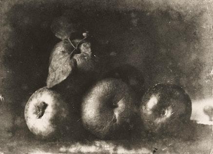 <p>Le Secq, Henri,<em>&nbsp;Still Life,</em>&nbsp;Gelatin silver print, 10 x 13 1/2