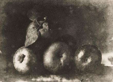 Le Secq, Henri,<em>Still Life,</em> Gelatin silver print, 10 x 13 1/2