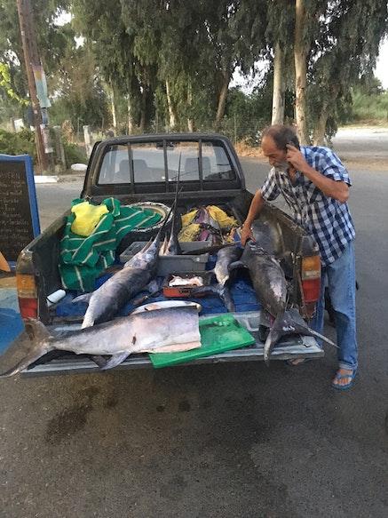 <p>Captain Miltos sells fish (Photot: L. Bartussek)</p>