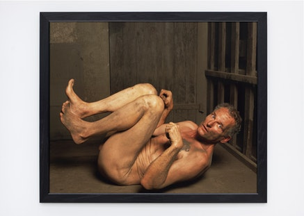 Andres Serrano, <em>Dog Position II (Torture)</em>, 2015. Pigment print, back-mounted on dibond, wooden frame, 60 x 50 inches.