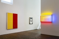 Installation view. Courtesy Peter Freeman Gallery.