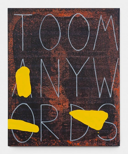 <p>Walter Swennen, <em>Too many words</em>, 2017, Ink and oil on canvas, 160.3 x 130.5 cm &copy; Walter Swennen. Courtesy Gladstone Gallery, New York and Brussels. (Photo: David Regen).</p>