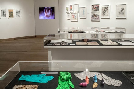 <em>Evidentiary Bodies</em> (installation view). Photo by Riya Lerner.