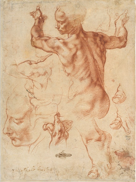 Michelangelo Buonarotti, <i> Studies for the  Libyan Sibyl (recto); Studies for the Libyan Sibyl and a small Sketch for a Seated Figure (verso)</i>,Red Chalk, with small accents of white chalk on the left shoulder of the figure in the main study (recto); soft black chalk, or less probably charcoal (verso). 11 3/8 x 8 7/16 in. Courtesy of the Metropolitan Museum of Art.